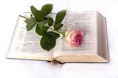 Bibel, Rose, Kirche  Meine Seele verzehrt sich vor Verlangen nach deinen Ordnungen allezeit. Psalm 119,20 Gottes Wort ist die wertvollste Gabe,  die ich als Bibel-Buch hier habe.  Voll Freude forsch* ich jeden Tag darin,  sie gibt meinem Leben Ziel und Sinn!  Frage:  Haben wir schon erkannt, wie wichtig Gottes Wort mit seinen Ordnungen für uns ist?  Tipp:  Die Seele des Psalmisten wird geradezu krank vor Sehnsucht nach Gottes Wegweisungen.