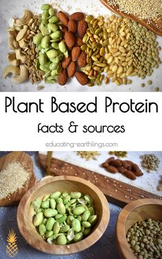 Based Protein Facts Sources Plant Based Protein Vegan Protein Sources Best Plant Based Protein When you eat a diet based on fruit vegetables whole grains and legumes. Plant Based Protein, Plant Based Diet, Plant Based Recipes, Raw Food Recipes, Vegetarian Recipes, Healthy Recipes, Vegan Food, Vegan Meals, Recipes Dinner