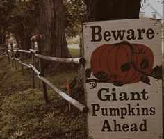 It's almost time for pumpkin patches, hayrides, and hot apple cider! Retro Halloween, Halloween Town, Halloween Ideas, Over The Garden Wall, Season Of The Witch, Autumn Aesthetic, Autumn Cozy, Spooky Scary, Best Seasons