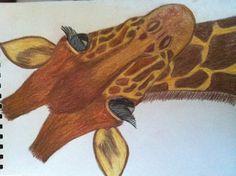 My sketch of a giraffe!