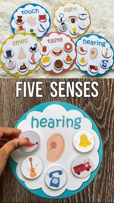 5 Senses Activities, Five Senses Preschool, Pre K Activities, Educational Activities For Kids, Infant Activities, Kindergarten Activities, Kids Learning, Preschool Special Education, Preschool Classroom