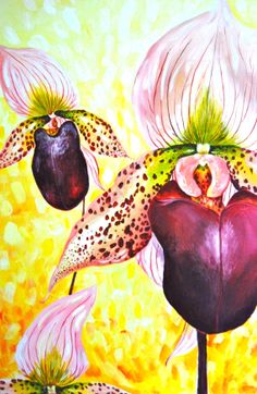 Acrylic Painting Orchids Lady Slipper Original by WoodPigeon, $900.00
