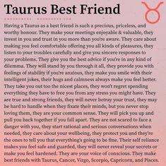 Taurus Memes, Scorpio Zodiac Facts, Taurus Quotes, Zodiac Memes, Taurus Traits, Zodiac Sign Traits, All Zodiac Signs, Astrology And Horoscopes, Zodiac Posts