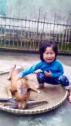 Child grieves over pet dog slaughtered. People don like to think that abusing snimals is abusing those who love theme too.