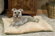 Pooch Pet Products  - Thermo Bed Heated Pet Bed - Small, $79.95 (http://www.4poochtreats.com/thermo-bed-heated-pet-bed-small/)