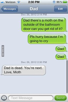 This is so me! Except replace moth with stink bugs....