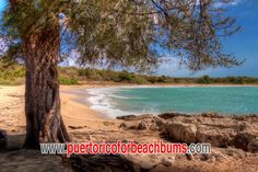 Playa del Tamarindo.  At the far end of the Guanica Dry Forest in Guanica, Puerto Rico