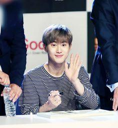 160629 EXO at Goobne Chicken fansign - - - | © cotton blossom | #exo #suho #xiumin #lay #chen #Baekhyun #chanyeol #kyungsoo #kai #sehun