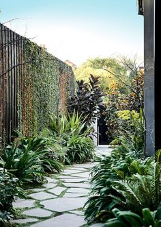 A good backyard landscaping idea is one that everyone can make use of. There are many different backyard landscaping ideas and most of them are pretty good Garden Paths, Garden Landscaping, Landscaping Ideas, Walkway Ideas, Residential Landscaping, Backyard Ideas, Walkway Designs, Succulent Landscaping, Garden Paving