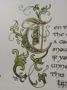 Illustrated calligraphy capital letter