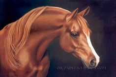 """Stretched Framed Paintings Reproduction African Animal Oil Paintings Horses, Size: 36"""" x 24"""", $125. Url: http://www.oilpaintingshops.com/stretched-framed-paintings-reproduction-african-animal-oil-paintings-horses-3050.html"""