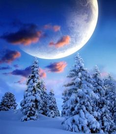 Snowy winter fairytale ____________________________ It's so beautiful Enjoy! Winter Schnee, Winter Moon, Shoot The Moon, Moon Pictures, Moon Photos, Beautiful Moon, Snow Scenes, All Nature, Winter Beauty