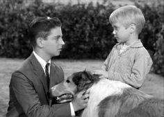 Lassie 1954–1957: Miller Family (Jeff's Collie) 1957–1964: Martin Family (Timmy & Lassie)