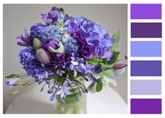color palette I made from one of my favorite floral arrangements