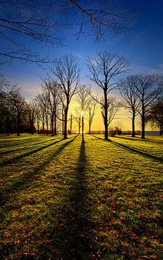 Phil Koch is such a talented photographer who lives in Milwaukee Wisconsin. He likes to expose the true nature with vibrant colors Beautiful Photos Of Nature, Nature Images, Amazing Nature, Nature Photos, Beautiful Landscapes, Beautiful World, Beautiful Places, Beautiful Pictures, Macro Photography