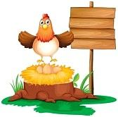 Illustration of a chicken with a nest above a trunk near a signage on a white background