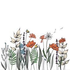 Wildflowers Line Drawing Wall Decor Botanical Illustration Wildblumen Strichzeichnung Wanddekoration Botanische Illustration The post Wildblumen Strichzeichnung Wanddekoration Botanische Illustration appeared first on Frisuren Tips - Tattoos And Body Art Wall Drawing, Plant Drawing, Art Drawings, Flower Drawings, Flower Art Drawing, Drawing Hair, Drawings Of Plants, Simple Flower Drawing, Floral Drawing