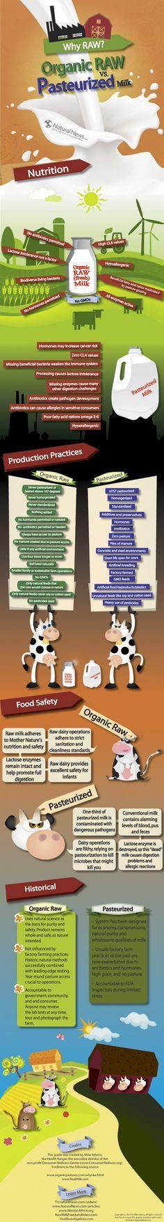 Raw Milk vs. Pasteurized Milk Infographic
