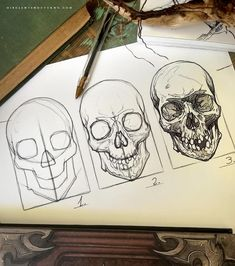 pencil drawings - White Tiger Poster Eyes Zazzle com Skeleton Drawings, Skeleton Art, Skull Drawings, Skull Reference, Drawing Reference, Skull Sketch, Anatomy Art, Skull Anatomy, Art Drawings Sketches