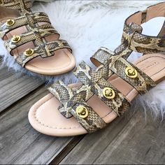 Coach leather gladiator sandals Super chic! Only worn once! Gladiator style meets the luxury of python-embossed Italian leather in a design punctuated by iconic Coach turnlocks. Python embossed leather Turnlock closure Rubber sole Coach Shoes Sandals