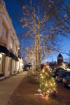 White Lights To Brighten Southampton Village For Yuletide - 27east