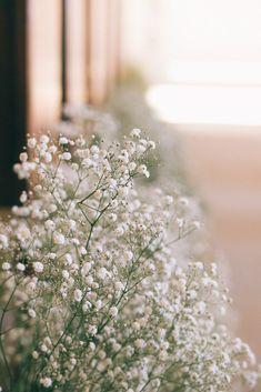 Stones of the Yarra Valley - Blumen Flower Background Wallpaper, Flower Phone Wallpaper, Scenery Wallpaper, Flower Backgrounds, Aesthetic Pastel Wallpaper, Aesthetic Backgrounds, Aesthetic Wallpapers, Nature Aesthetic, Flower Aesthetic