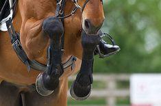 10 tips to banish riding nerves