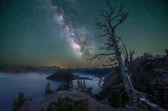 See night sky adventure photos submitted to National Geographic by users like you. State Of Oregon, Oregon Coast, East Coast, Central Oregon, Sky Adventure, Adventure Photos, Crater Lake National Park, National Parks, Photo Tree
