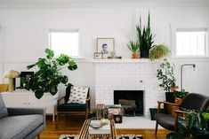 west elm - A Plant Filled Mid-Century-inspired Colorado Home