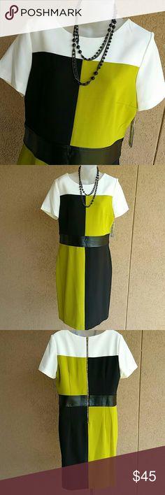 "🆕 Darren Z Dress Brand new color block dress with a faux leather waist band. Jewel neckline. Short sleeve. Gold zipper closure. Underarm to underarm 20"" Shoulder to hem 38"". Never been worn. Darren Z Dresses Midi"