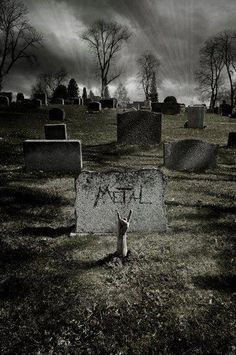 Metal...even after death \m/