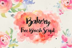 DLOLLEYS HELP: Bakery Free Brush Script Font
