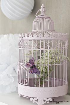Birdcage..Add a few more butterflies & flowers