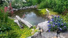 Outdoor Decor, Plants, Home Decor, House, Decoration Home, Room Decor, Home, Plant, Home Interior Design