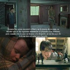 Pinterest 17 Frases Harry Potter Images Albus Dumbledore The