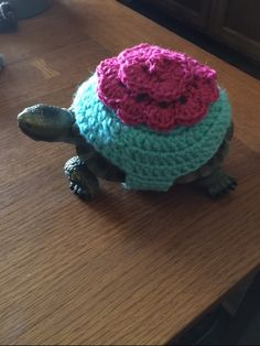Keep your tortoise warm and always be able to see them when taking them outside for exercise. If you would like to purchase a tortoise sweater, please contact me at kconlan@aol.com