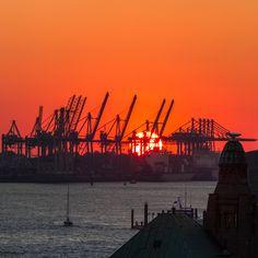 Kräne bei Sonnenuntergang | Bildschönes Hamburg