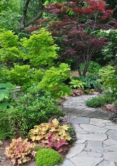 shade garden More