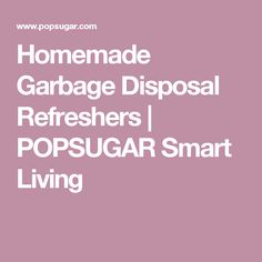 Homemade Garbage Disposal Refreshers | POPSUGAR Smart Living