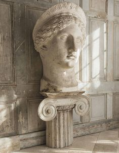 An oversized plaster cast bust of the Juno ludovisi late 19th century, after the antique
