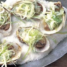Oysters on the Half Shell with Apple-Horseradish Slaw Recipe