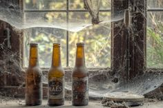 Bier met spinnenwebben in een verlaten boerderij #beer #lostplace #abandonedplace #photography