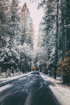 a-little-simple-blog:  banshy:  Yosemite National Park //...