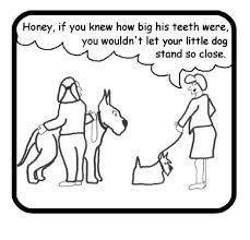 Little dog, big teeth