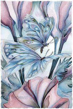 Bergsma Gallery Press::Paintings::Insects & Amphibians::Butterflies::Metamorphosis - Prints