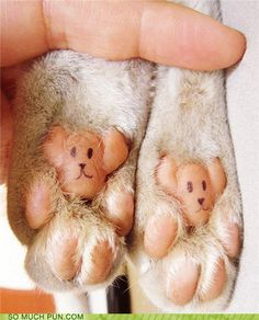 some are more bear-foot than others...
