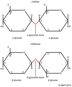 Image result for oxidative and substrate level