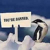 Google Penguin Update Marketing News, Internet Marketing, Affiliate Marketing, Google Penguin, Pet Cemetery, Search Engine, Penguins, Seo, Tired