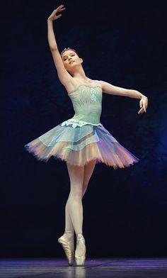 Marina as Dulcinea