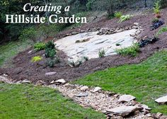 Hillside Landscape Makeover with Southern Living Plant Collection, working with a rock covered back yard.